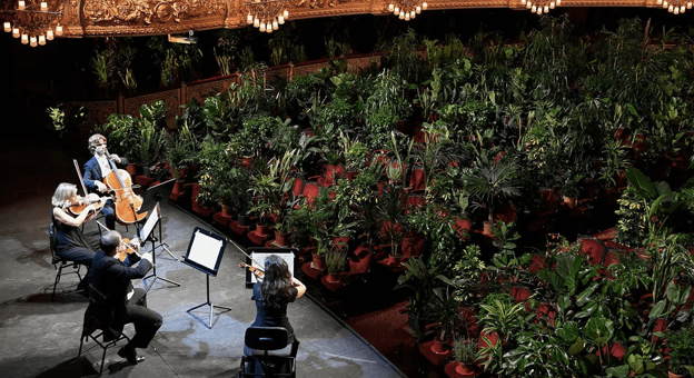 Barcelona'da bu akşam bitkilere konser veriliyor