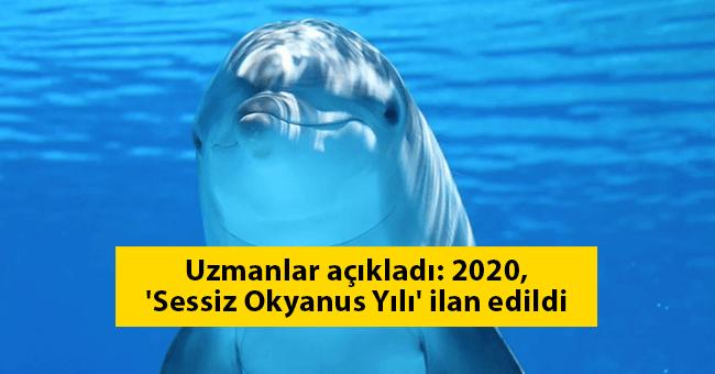 Uzmanlar açıkladı: 2020, 'Sessiz Okyanus Yılı' ilan edildi
