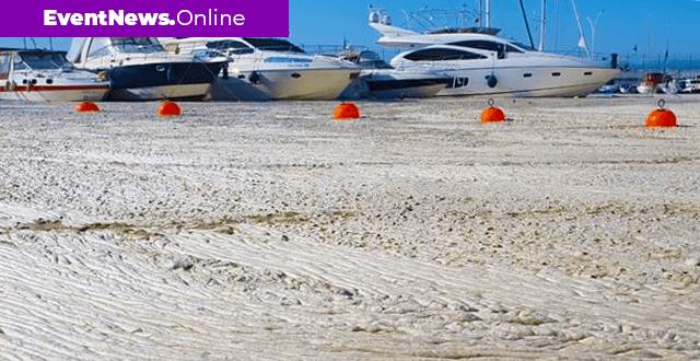 Müsilaj, Marmara Denizi'nde ciddi ekolojik tahribat oluşturdu
